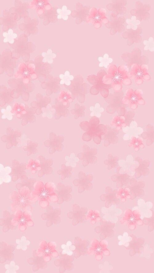 Pink Sakura phone wallpaper