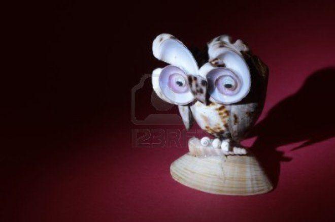 14118835-Owl-украшения-сделанный из-морских раковин-на-фоне