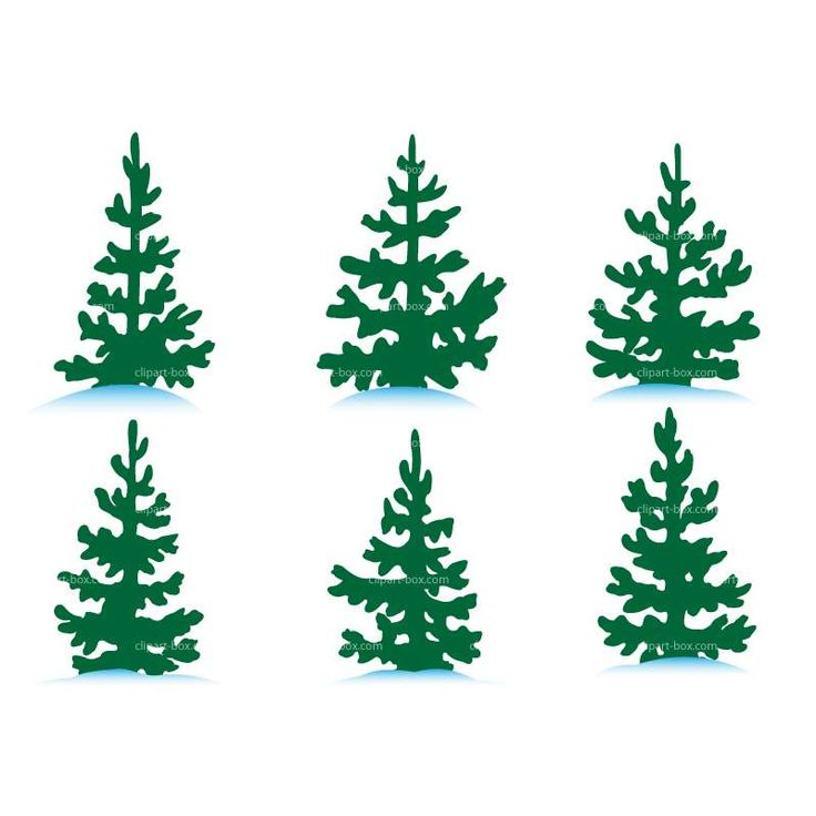 CLIPART PINE TREES SET | Royalty free vector design ...