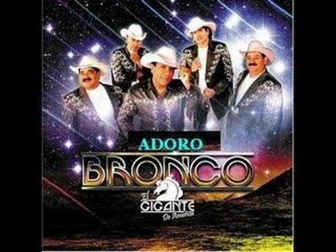 Adoro - Bronco