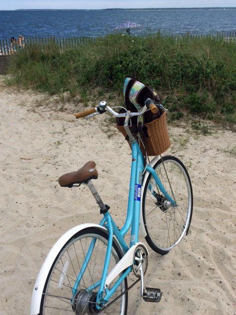 Shining Sea Bike Path in Falmouth, Massachusetts
