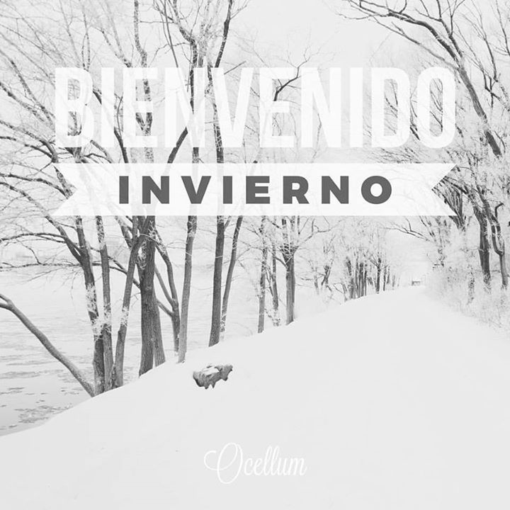 Bienvenido invierno. #welcomewinter #welcome #bienvenido #winter #invierno #cold #snow #white #today #photooftheday