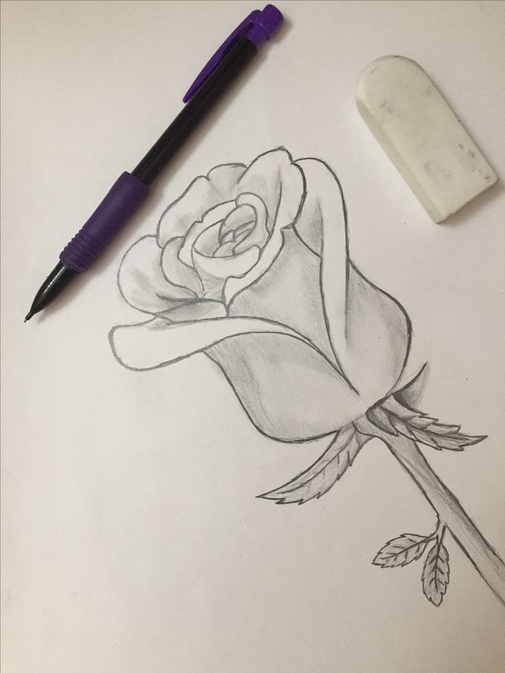 Roses are red 🌹 Credit: Cathy Yue Ig: @thegirlwhoplaystheflute Twitter: @kpop_exo_bts_17 Pinterest: @cathy_kaixi2000