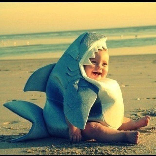 Cute Baby Shark! | Kid/Baby Things | Pinterest