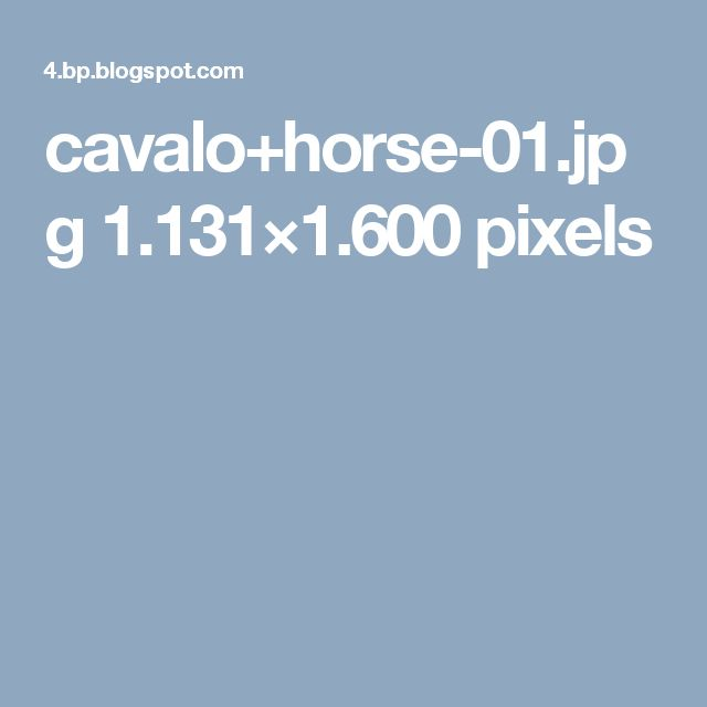 cavalo+horse-01.jpg 1.131×1.600 pixels