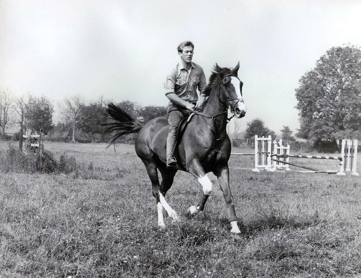 Show jumping champion David McPherson Broome CBE, and Mister Softee: He competed in the 1960, 1964, 1968, 1972, and 1988 Olympics, and won individual bronze medals in 1960 and 1968 on his best-known horse Mr Softee. In 1960, he was voted BBC Sports Personality of the Year, and at the 1972 Games served as the Olympic flag bearer for Great Britain.