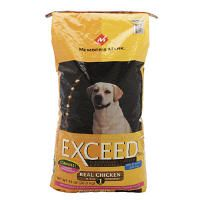 Best Grain Free Dog Food Under Budget