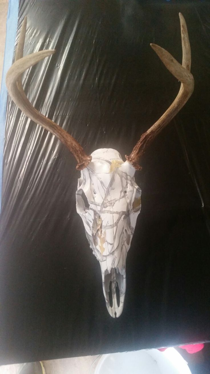 1000 Images About Hydrodipping On Pinterest Deer Skulls