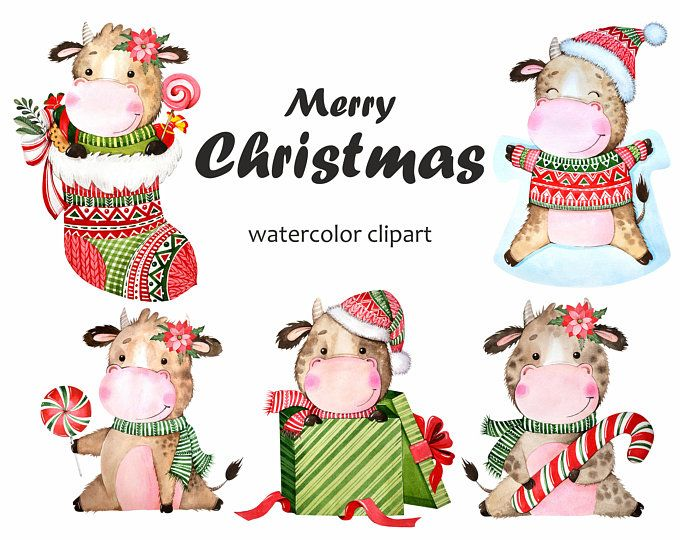 bull 2021 watercolor new year s clipart bulls drawings etsy in 2020 clip art new year clipart watercolor clipart bull 2021 watercolor new year s clipart