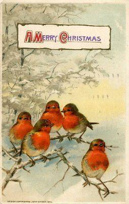Christmas ~ Card ~ maude and mozart: November 2006