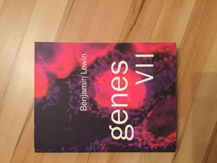 Genes VII Benjamin Lewis, 1. Ausgabe, von 2000, englisch sehr guter Zustand