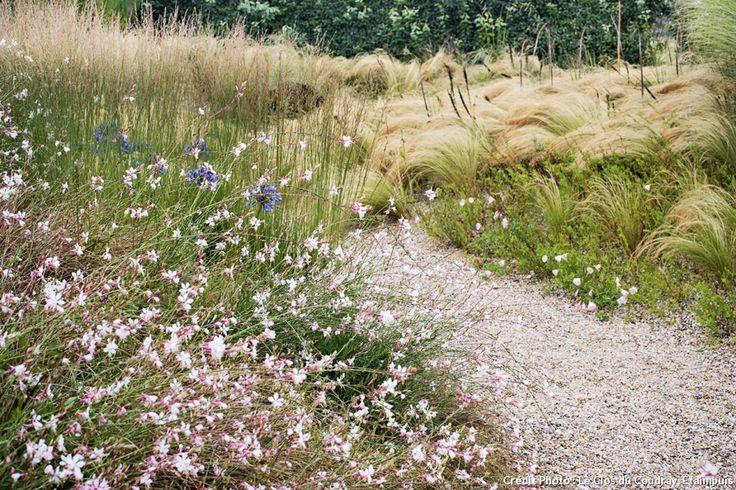 4 astuces pour un beau jardin sans entretien gravier for Plante sans entretien jardin