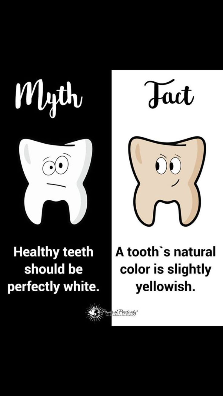 1028 best Dental Love images on Pinterest   Dentists, Teeth and ...