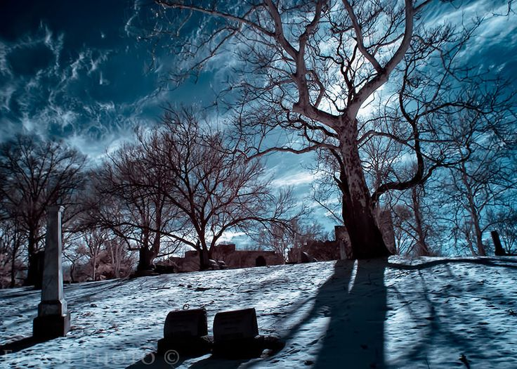 Full Moon by photographer BOB VISHNESKI  I love the chilly atmosphere in this photo, and this relates more closely to the scary and creepy stereotype associate with cemeteries.