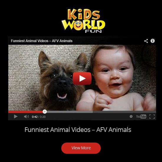 World best funny video clips-6127
