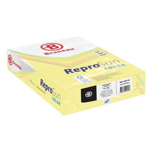 Ramette papier couleur Bruneau Reprosun couleurs pastel A4 80 gr - 500 feuilles 4,99