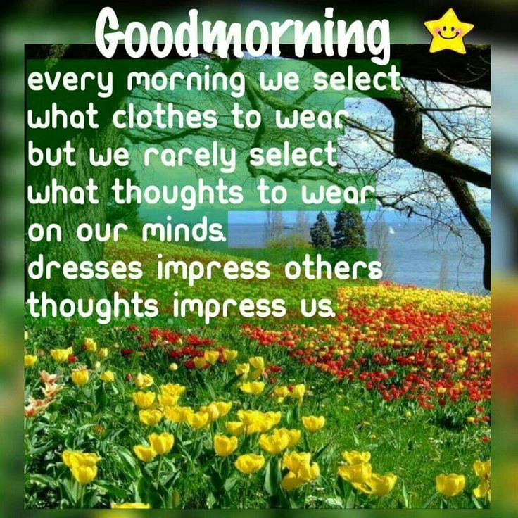 Good Morning Everyone Miss Caroline : Best images about good morning on pinterest