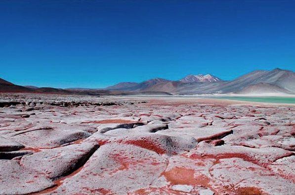 Piedras Rojas, Salar de Talar. San Pedro de Atacama.  Hoy nos acompaña Pedro y su fotografía de uno de los paisajes más bello de nuestro país. Visita su instagram @pedro_fotografiando y disfruta de sus fotografía con esta hermosa vista.  Recuerda ocupar nuestro HT #comunidadfotografía y nuestro correo fotodeldia@comunidadfotografia.cl