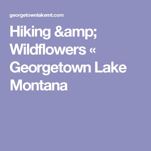 Hiking & Wildflowers «  Georgetown Lake Montana
