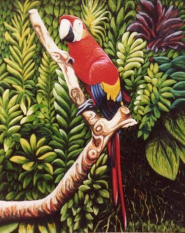 "Saatchi Art Artist Dan Civa; Painting, ""Big parrot, Colombo Zoo, Sri Lanka"" #art"