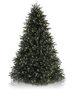 Artificial Christmas Trees, Lights & Christmas Ornaments - Balsam Hill