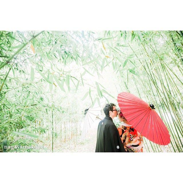 和装の《前撮り》や《フォトウェディング》で定番!「和傘」を使ったおしゃれなポーズ&アイディア*11選   ZQN♡