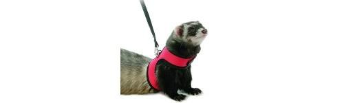 Collares y arneses para roedores al mejor precio en la tienda de mascotas online Wakuplanet.com
