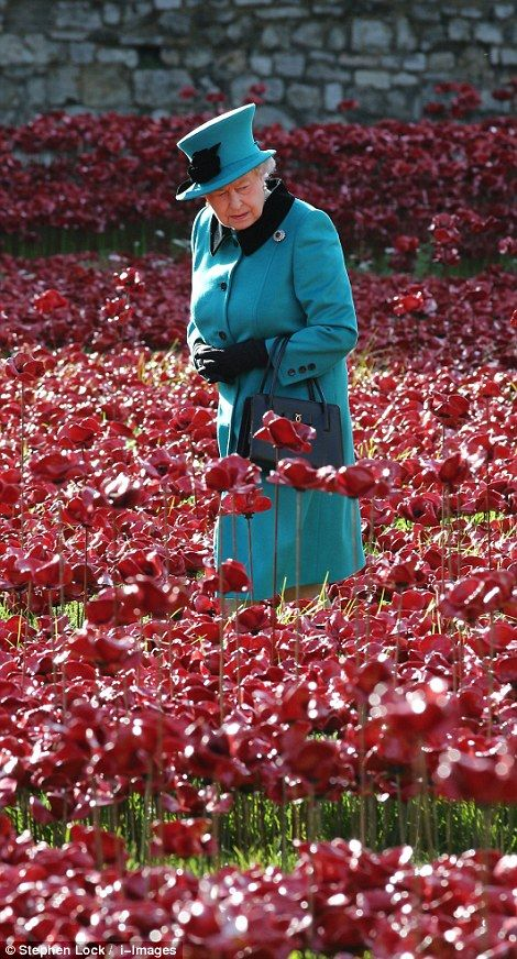 Powerful: The Queen inspects the poppies at the Tower of London 16/10/2014