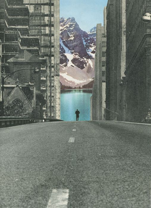 ' Into the wild ' Collage on paper © Sammy Slabbinck 2013