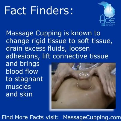 Fact Finders Monday:  Massage Cupping is known to change rigid tissue to soft tissue, drain excess fluids, loosen adhesions, lift connective tissue and brings blood flow to stagnant muscles and skin.  For more Massage Cupping Facts visit:  http://www.massagecupping.com