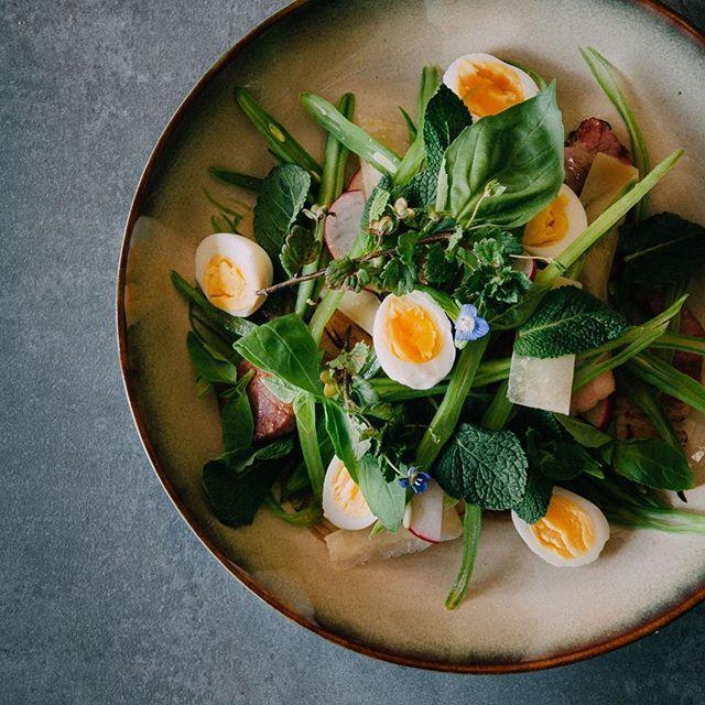Veggie salad with a lead for fresh beans.. String beans. Together with radish, some bacon, Parmesan cheese and those cute little eggs they make a great salad! / mooie groentesalade met in de hoofdrol verse bonen.. Snijbonen om precies te zijn. Samen met plakjes spek, Parmezaanse kaas, radijsjes en van die leuke kwarteleitjes een super lekkere salade! Het recept vind je op mijn blog : zie bio!