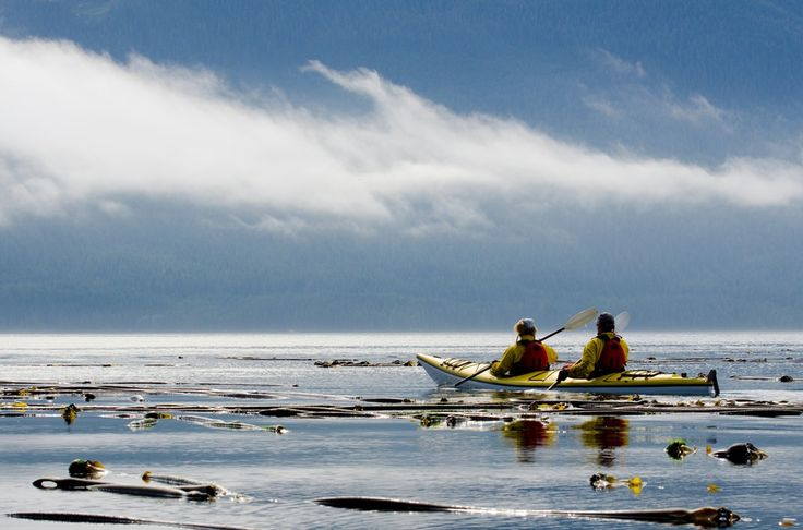 paddling in unison - scanning the horizon for wildlife sightings