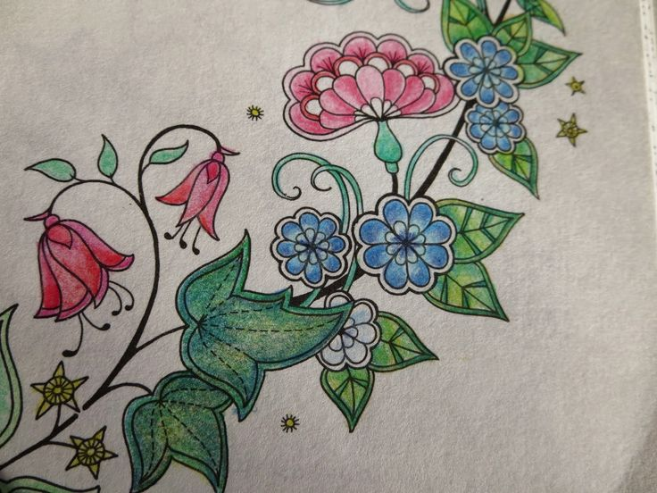 Passion For Pencils My Secret Garden Colouring Book Part 1