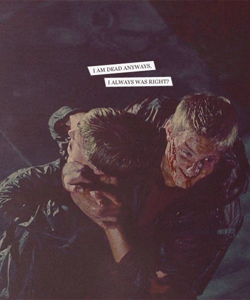 32 best cato images on pinterest hunger games catching