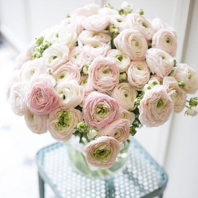 Ranunkel Liebe! Mein WochenendGlck von floralwerkoldenburg dasgnnichmir flowerpower lisbeths liebtblumenhellip