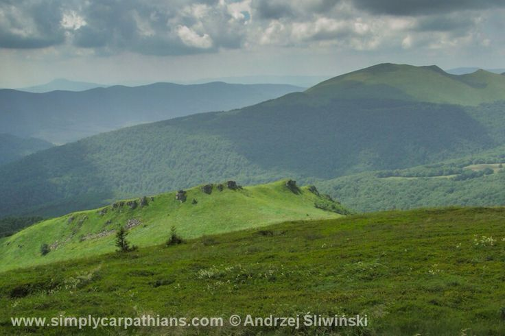Woodless ridges of the Bieszczady Mountains. #bieszczad #poland  www.simplycarpathians.com