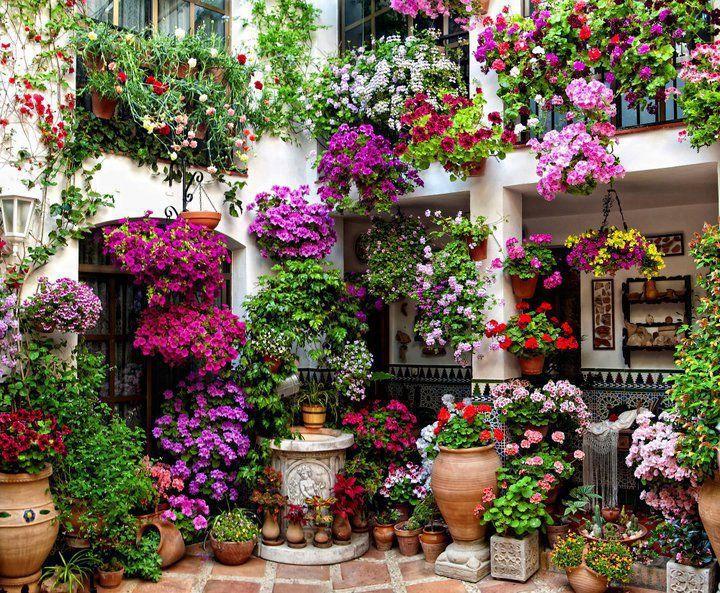garden in New Orleans