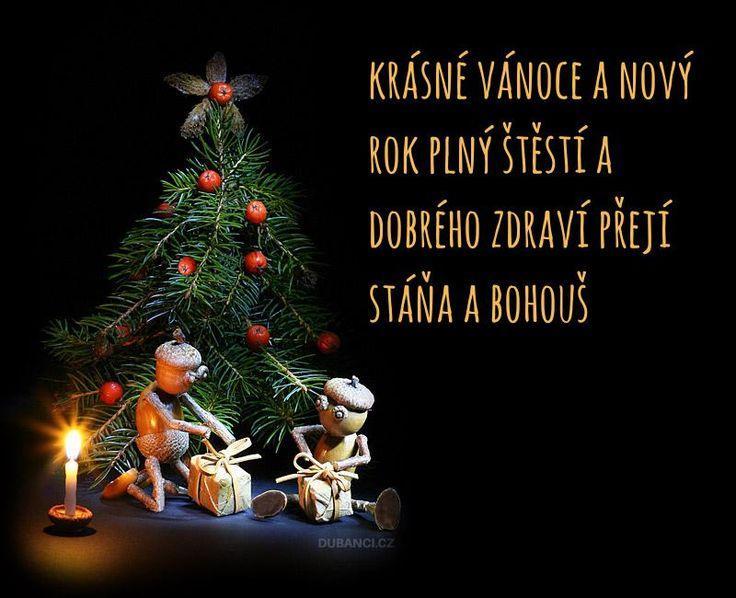 Generátor vánočního přání s dubánky - PF 2017