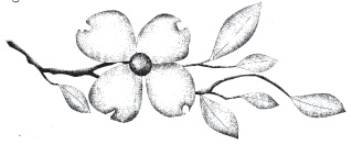 Dogwood Branch stamp-but as a tattoo?? hehehe