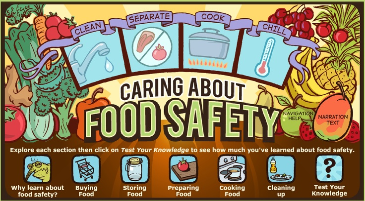 childhood food safety guidelines Guidelines for food service establishments  essentials for childhood initiative steering committee  and food safety regulators throughout the country.