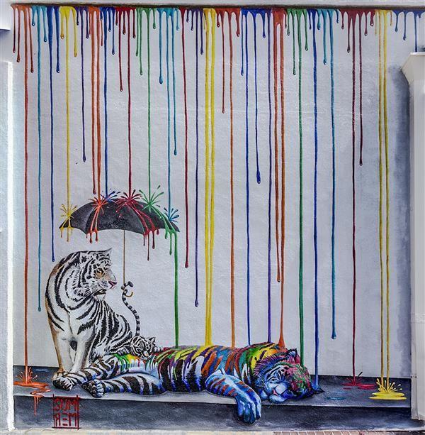 Tigers in Carlsbad, California