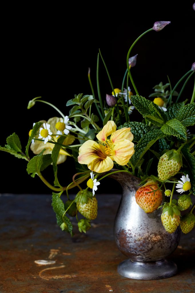 Still Life - edible flowers: chamomile strawberries & nasturtium; Jennifer Causey
