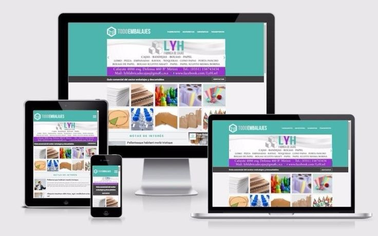 Blimpo Diseño & Desarrollo Web. www.blimpo.com.ar | Villa Carlos Paz | alaMaula | 117093122