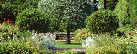 Il Principe Carlo: appassionato della coltivazione biologica - Stile Di Vita