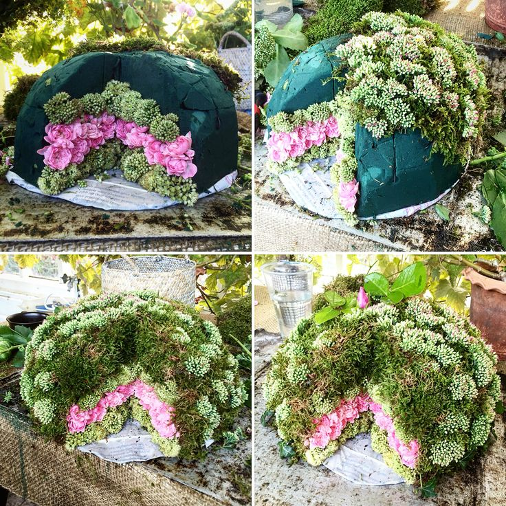 #prinsesstårta #oasis  #kärleksört #mossa #rosor #murgröna