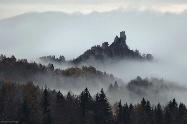 горы, лес, туман
