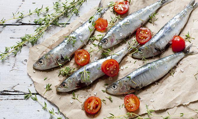 Sardellen, Sardinen & Co – Köstliches aus dem Mittelmeer