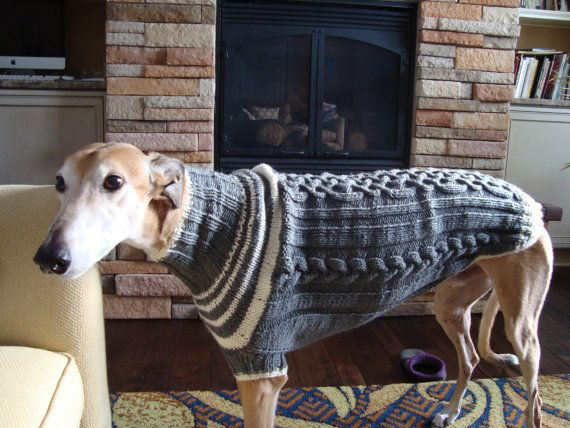 17 Best images about Greyhound & Whippet sweaters on Pinterest Custom m...