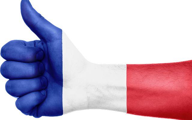 Cosa sono le certificazioni DELF e DALF? Sei uno studente di lingue? Hai mai pensato di conseguire un diploma di conoscenza della lingua francese? Essere in possesso di una certificazione linguistica è una marcia in più per migliorare il p #lingue #francese #scuola #studenti