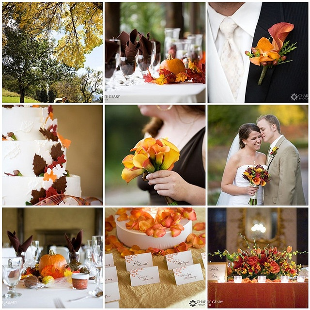 Fall wedding theme featuring pantone 39 s tangerine tango for Wedding themes for september